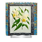 Orchid Framed On Weathered Plank And Rusty Metal Shower Curtain