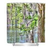 A Beautiful Day In The Bayou Shower Curtain