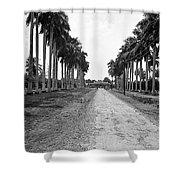 A Big Pathway Shower Curtain