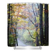 A Canopy Of Autumn Leaves Shower Curtain