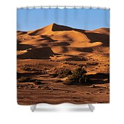 A Caravan In The Desert Shower Curtain