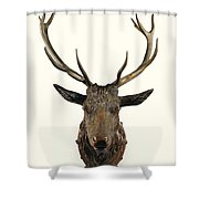 A Carved Wooden Red Deer Trophy With Red Deer Antlers, 19th Century Shower Curtain