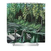 A Day Out Shower Curtain