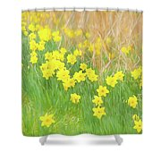 A Host Of Daffodils Shower Curtain
