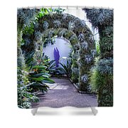 A Living Arch Shower Curtain