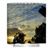 A Long Days Journey Into The Night Shower Curtain