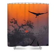 A New Year Begins Shower Curtain