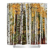 A Quiet Place Shower Curtain by Rick Furmanek