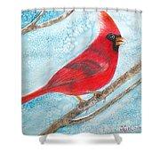 A Red Bird  Shower Curtain