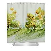A Simple Landscape Shower Curtain