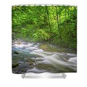 A Springtime Stream Shower Curtain