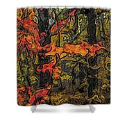 A Time In The Woods Shower Curtain