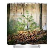 A Tiny Pine Shower Curtain