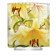 A Tower Of Lilies Shower Curtain