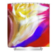 A White Rose In An Abstract Style. Shower Curtain