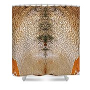 Abstract Faces 2 Shower Curtain