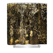 Abstract Scary Ocher Plaster Shower Curtain