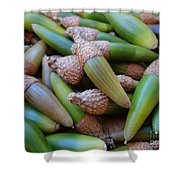 Acorn Harvest Shower Curtain