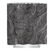 After Billy Childish Pencil Drawing 11 Shower Curtain