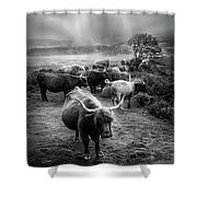After The Rain On The Mountain In Black And White Shower Curtain