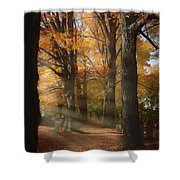 Afternoon Light In Fall Colors Of New England Shower Curtain