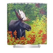 Afternoon Munch Shower Curtain by Tracey Goodwin