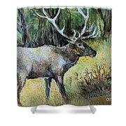 Alaska Elk Shower Curtain