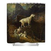 Albert_bierstadt_-_rocky_mountain_goats Shower Curtain