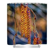 Alder Blossoms Shower Curtain