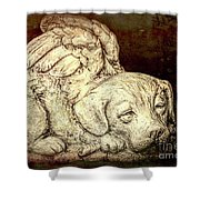 All Dogs Are Angels Shower Curtain