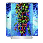 Alley-wall Paradise Shower Curtain