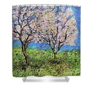 Almonds In Full Bloom Shower Curtain