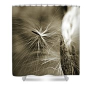 Almost Shower Curtain by Michelle Wermuth