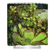 Aloe Succulent Shower Curtain