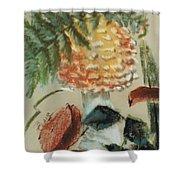 Amanita Muscaria Shower Curtain by Barbara Keith