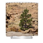 Amazing Life On The Sandstone Cliffs Shower Curtain