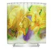Amenti Yellow Iris Flowers Shower Curtain