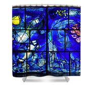 American Windows Shower Curtain