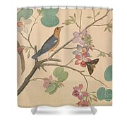An Orange Headed Ground Thrush And A Moth On A Purple Ebony Orchid Branch, 1778 Shower Curtain