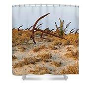 Anchors In Barril Beach Shower Curtain