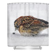 And These Thy Gifts  Shower Curtain