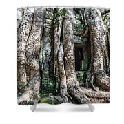 Angkor Roots Shower Curtain