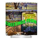Animal Kingdom Custom Greeting Card Shower Curtain