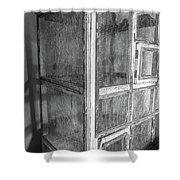 Antique Bird Cage Shower Curtain