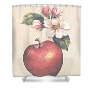 Apple And Blossoms Shower Curtain