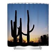 Arizona Cacti, 2008 Shower Curtain