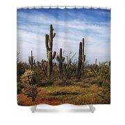 Arizona Dreaming Shower Curtain