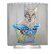 Arizona Wildcat Shower Curtain