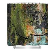 Art Print Rust 6 Shower Curtain by Harry Gruenert