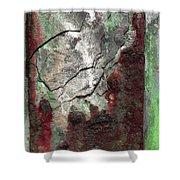 Art Print Rust 7 Shower Curtain by Harry Gruenert